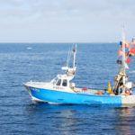 Sortie de pêche à Houat