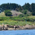 Le Cairn de Gavrinis, un site préhistorique exceptionnel