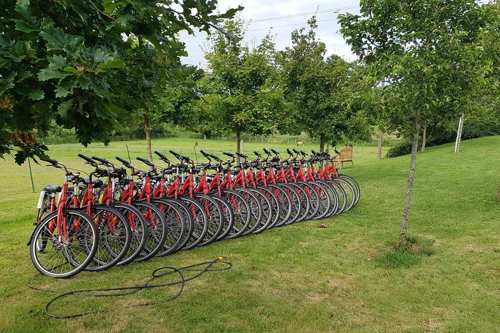Vélos pour une balade en groupe aux Hauts de Toulvern