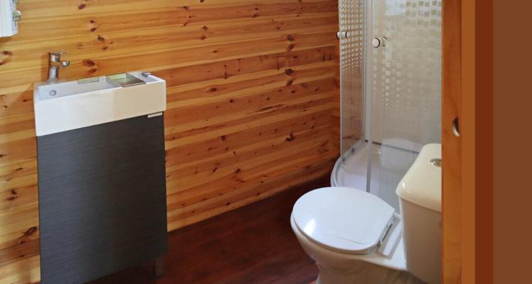 Salle de bain avec douche, WC et lavabo
