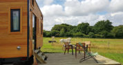 Tiny House 4/6P : vue sur les chevaux